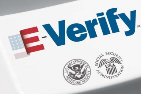 e-verify immigration